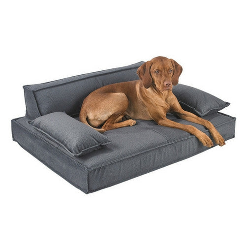 Bowsers Pet Products Scandinave Pet Sofa Rectangular Dog Bed — Flint with Dog