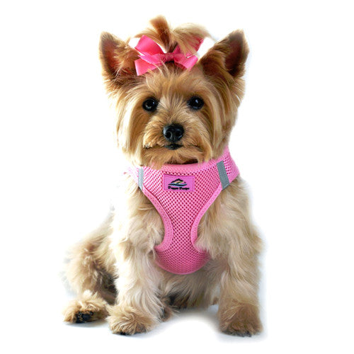 Doggie Design American River Choke Free Dog Harness — Candy Pink on Dog