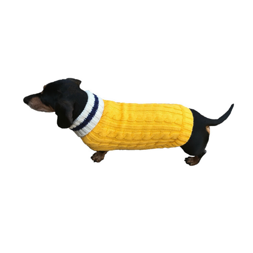 Dallas Dogs Preppy Pup Acrylic Dog Sweater — Yellow Navy