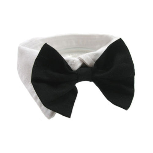 Doggie Design Formal Dog Tuxedo Shirt Collar with  Black Bow Tie