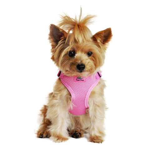 Doggie Design Wrap and Snap Choke Free Dog Harness Candy Pink on Dog