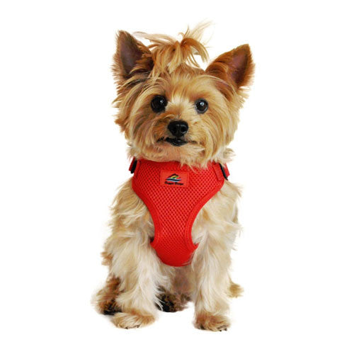 Doggie Design Wrap and Snap Choke Free Dog Harness Flame Red on Dog