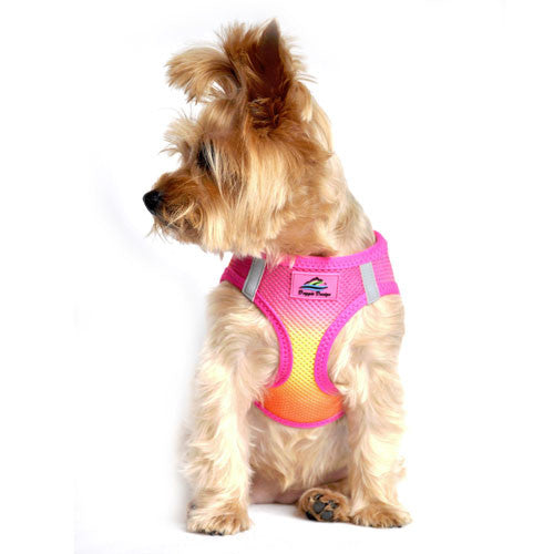 American River Ombre Harness — Raspberry Pink + Orange