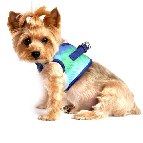 Doggie Design Ombre American River Choke Free Dog Harness — Northern Lights on Dog Side View