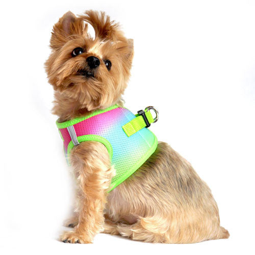 Doggie Design Ombre American River Choke Free Dog Harness — Rainbow on Dog Side View
