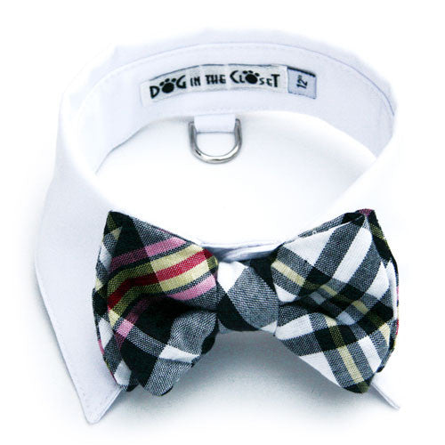 Dog In The Closet Whitw Shirt Collar with Black & White Madras Bow Tie