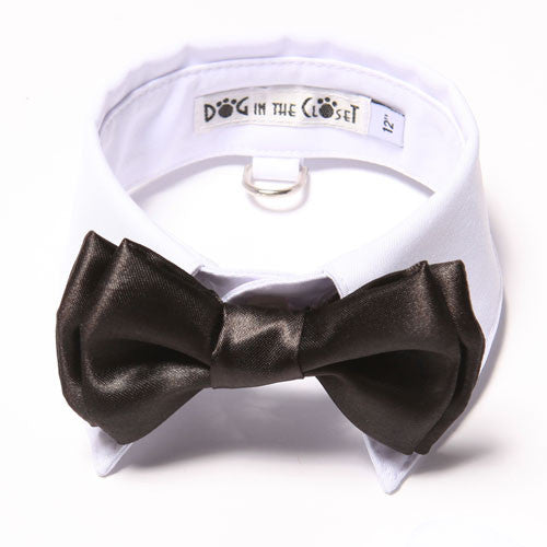 Dog In The Closet White Shirt Collar With Black Bow Tie Dog Collar