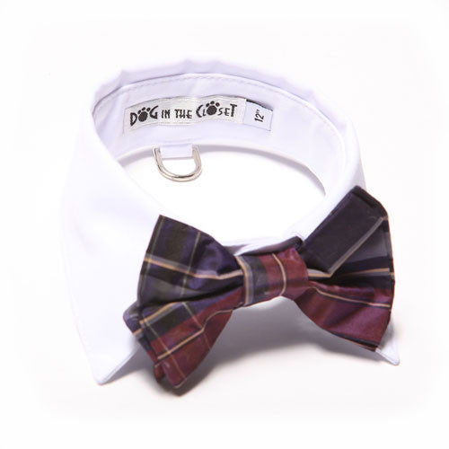 Dog In The Closet White Shirt Collar With Purple Plaid Bow Tie Dog Collar