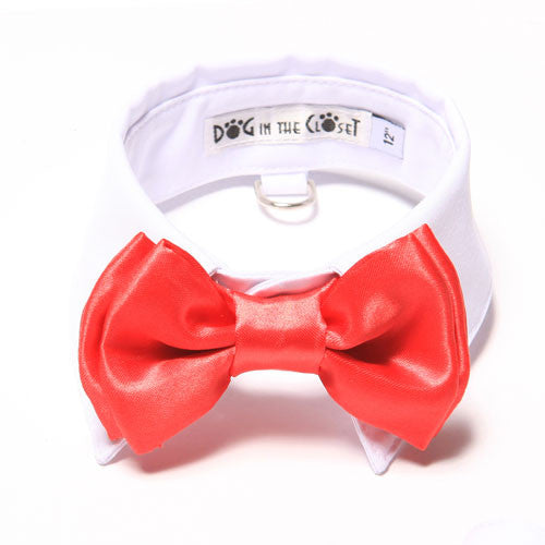 Dog In The Closet White Shirt Collar With Red Bow Tie Dog Collar