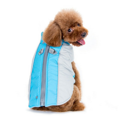 Dogo Pet Fashions Mountain Hiker Winter Dog Coat on Dog Back view