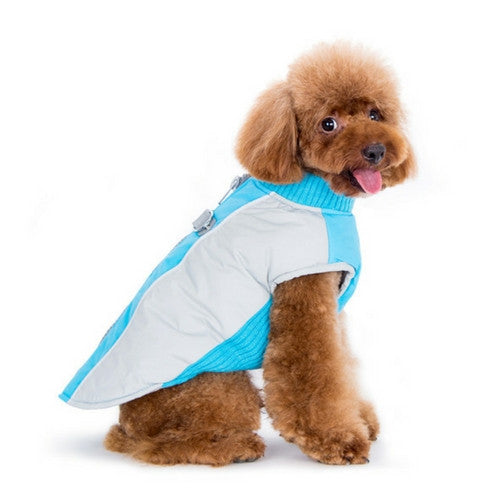 Dogo Pet Fashions Mountain Hiker Winter Dog Coat on Dog Side View