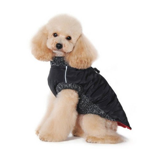 Dogo Pet Fashions Black Runner Winter Dog Coat on Dog Side View