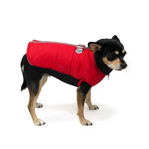 Dogo Pet Fashions Red Insulated Urban Runner Winter Dog Coat on Dog
