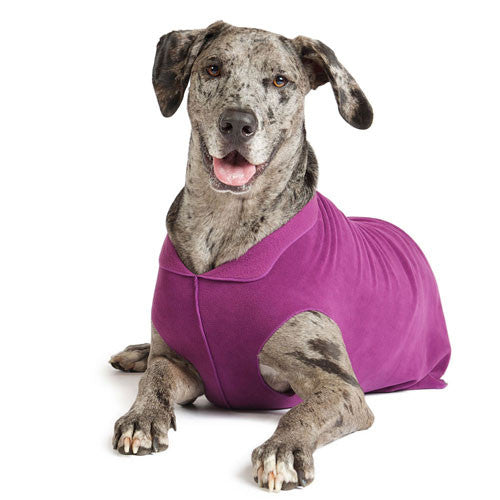 Gold Paw Series Stretch Fleece Pullover Dog Clothing — Eggplant