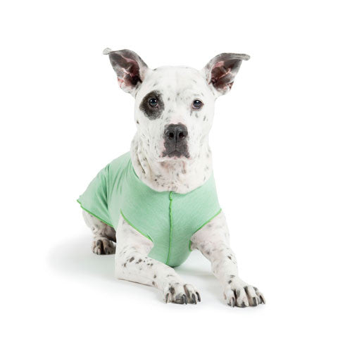 Gold Paw Series Sun Shield UV Protection Dog Tee Shirt Pistachio Heather