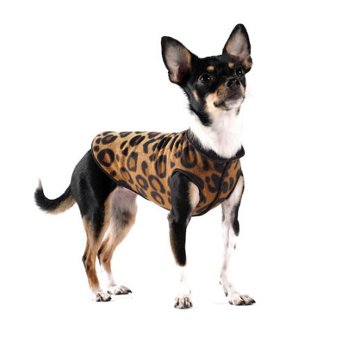 Gold Paw Series Duluth Double Fleece Pullover Dog — Leopard Black