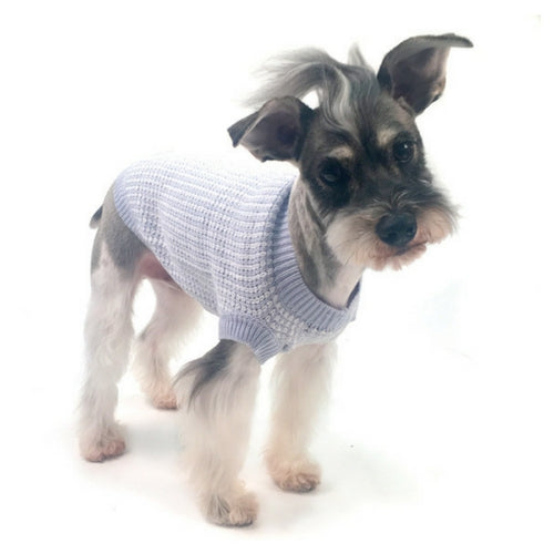 Truly Oscar Oscar Newman It's A Boy Designer Dog Sweater on Dog