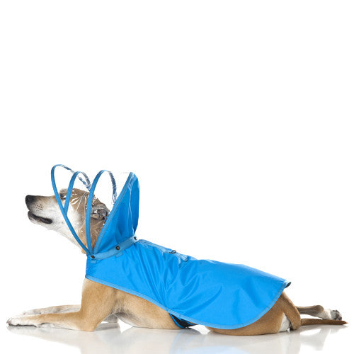 Push Pushi Rainbow Solid Color Dog Raincoat — Light Blue