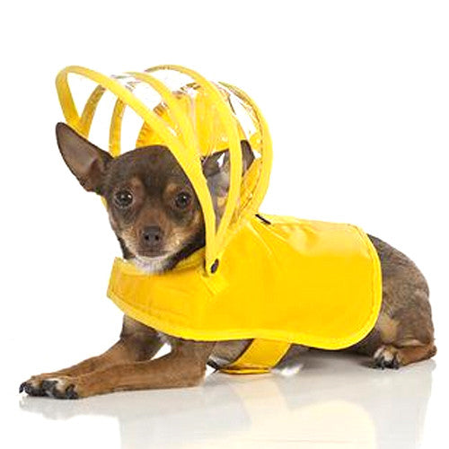 Push Pushi Rainbow Solid Color Dog Raincoat — Yellow