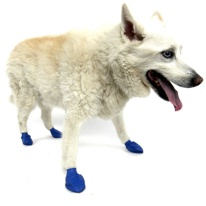 PawZ Natural Rubber Protective Paw Wear Dog Boots Medium Blue