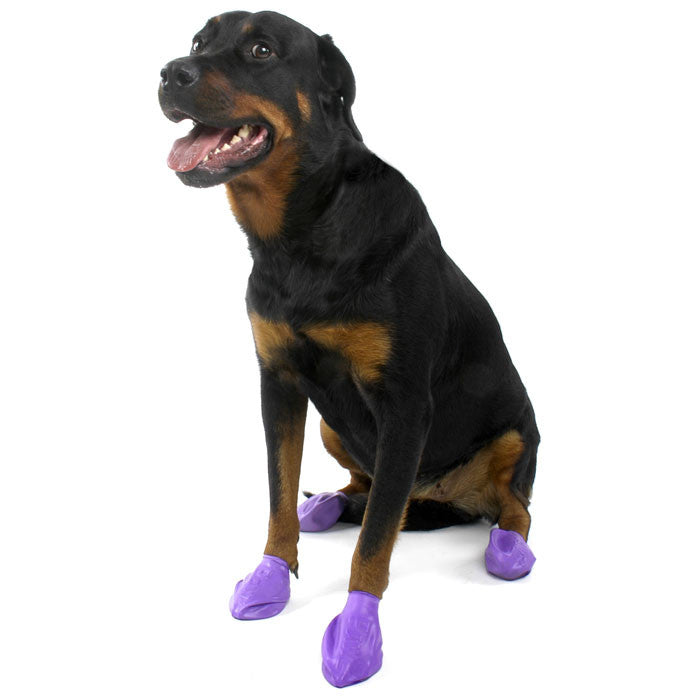 PawZ Natural Rubber Protective Paw Wear Dog Boots Large Purple
