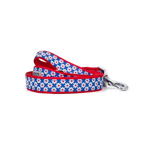 The Worthy Dog Daisies Ribbon Nylon Lead