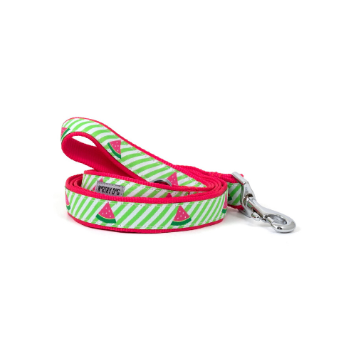 The Worthy Dog Watermelon Ribbon Nylon Lead
