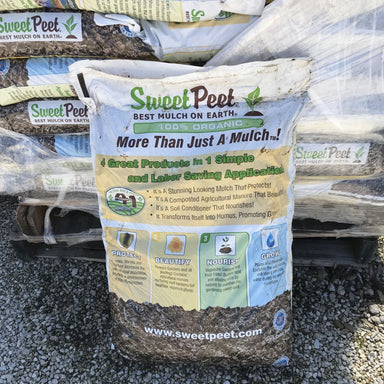 Sweet Peet for sale kollmans greenhouse twinsburg oh