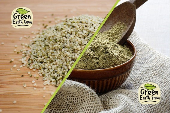 The Battle Continues... Hemp Seed v Hemp Protein