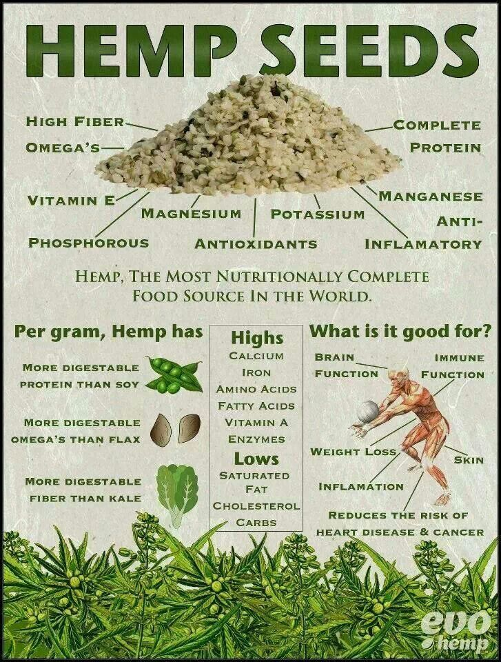 Hemp Seed Benefits @sourceevohemp