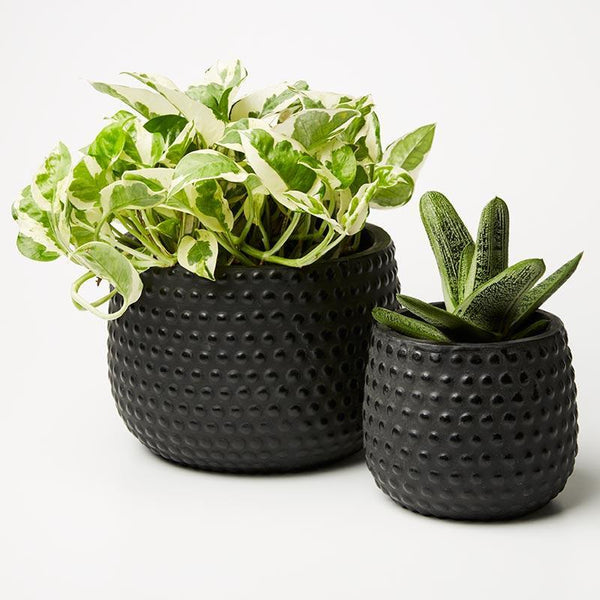 Hobnail Planter - Black