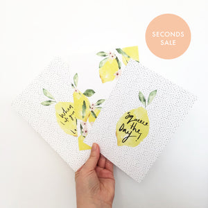 SECONDS SALE Set of 3 Lemon Prints