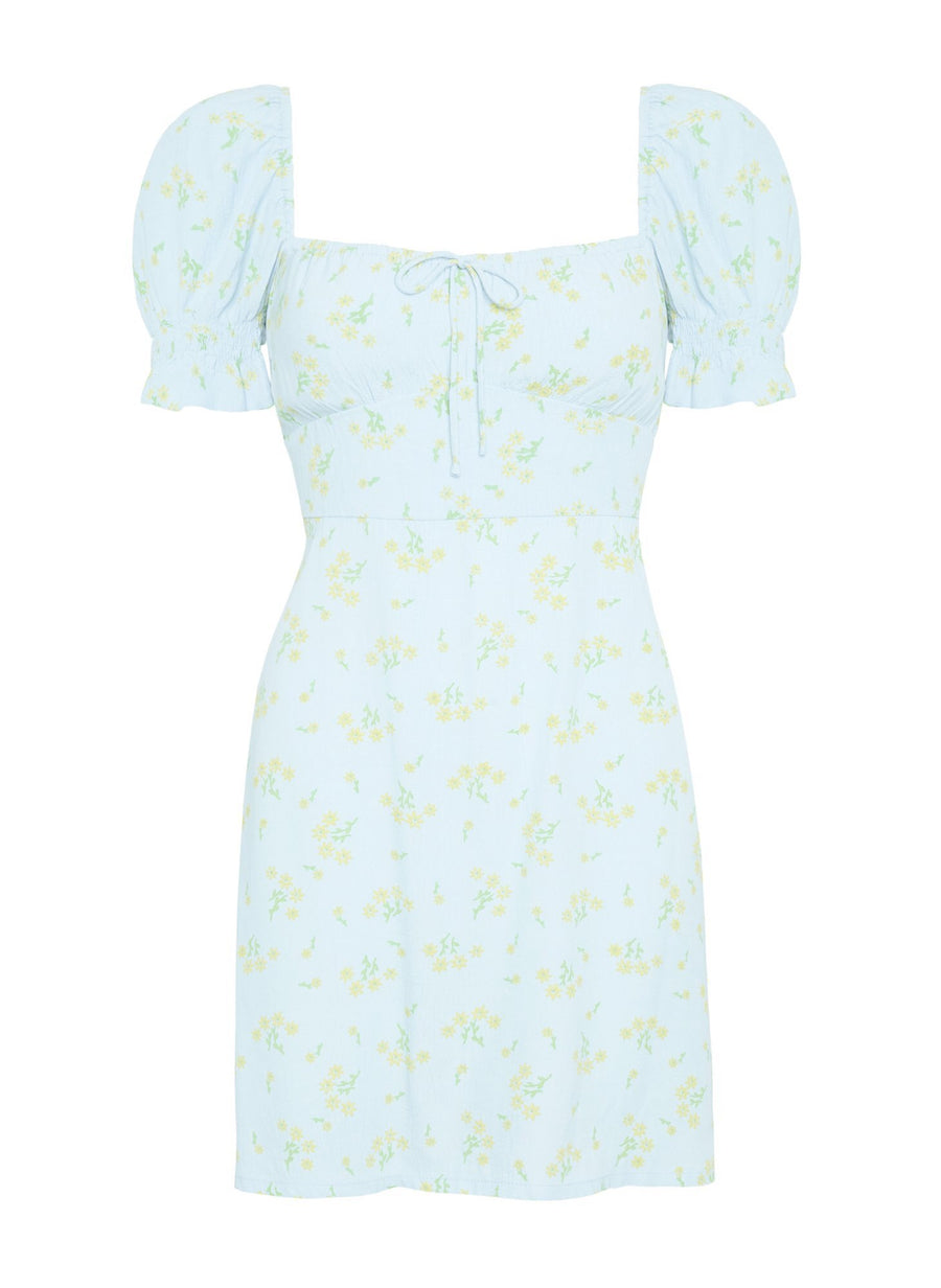 Faithfull Iris Mini Dress Daria Floral