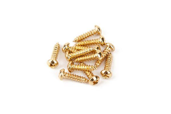 Fender Pure Vintage Tuning Machine Mounting Screws, Gold, (12) - Guitar Station Melbourne, Australia