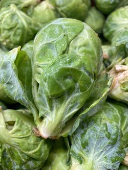 Brussels sprouts 2lbs bag