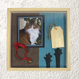 "Shadow Box ""Pet Therapy"" - NONèdabuttare"