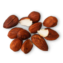 Load image into Gallery viewer, Sprouted Almonds