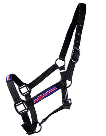 Halter with the Icelandic Flag and a rope
