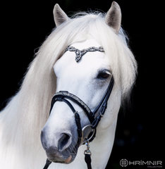 Hrimnir Flash Noseband - Fire and Ice