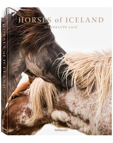 Horses of Iceland by Guadalupe Laiz
