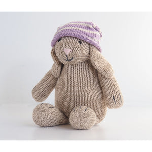 Brown Bunny in Knit Hat
