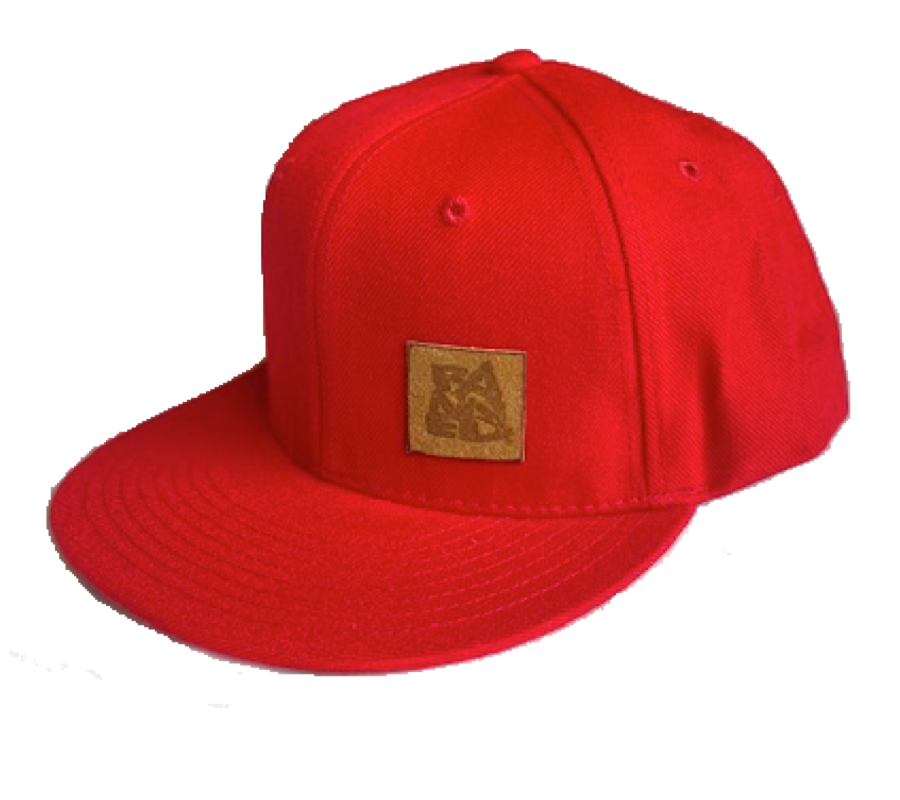 BANNED Midfielder Cap Flat Bill Snap Back