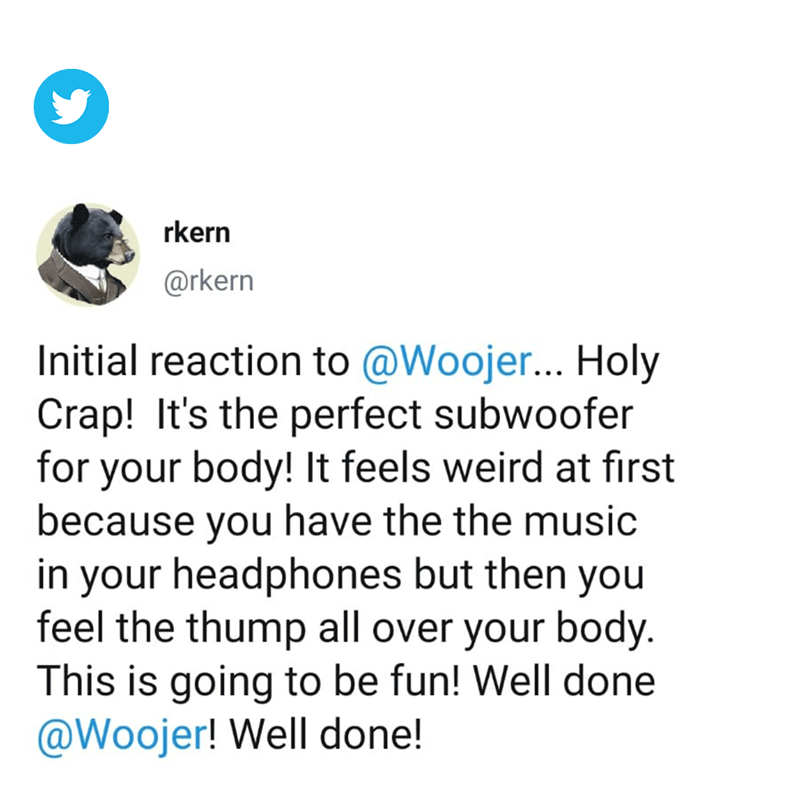Woojer Review