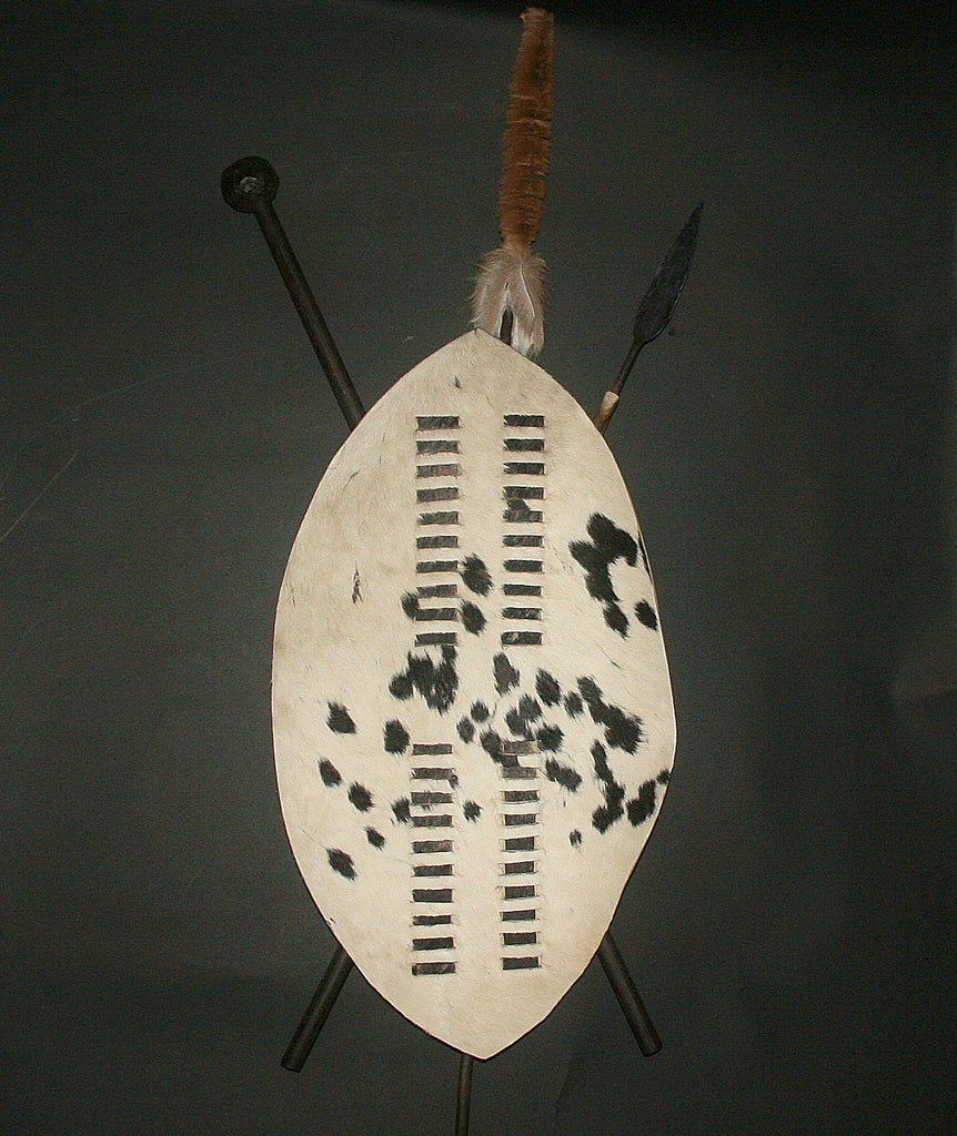 African Zulu Shield Spear and Club Knob-Kerrie Vintage Isihlangu - Cultures International From Africa To Your Home