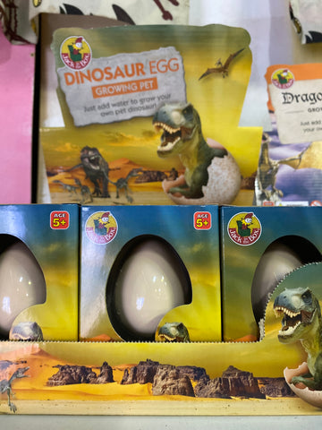 Growing Pet Egg ~ Dinosaur