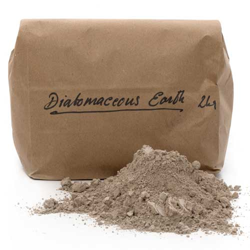 2kg Bag of Diatomaceous Earth