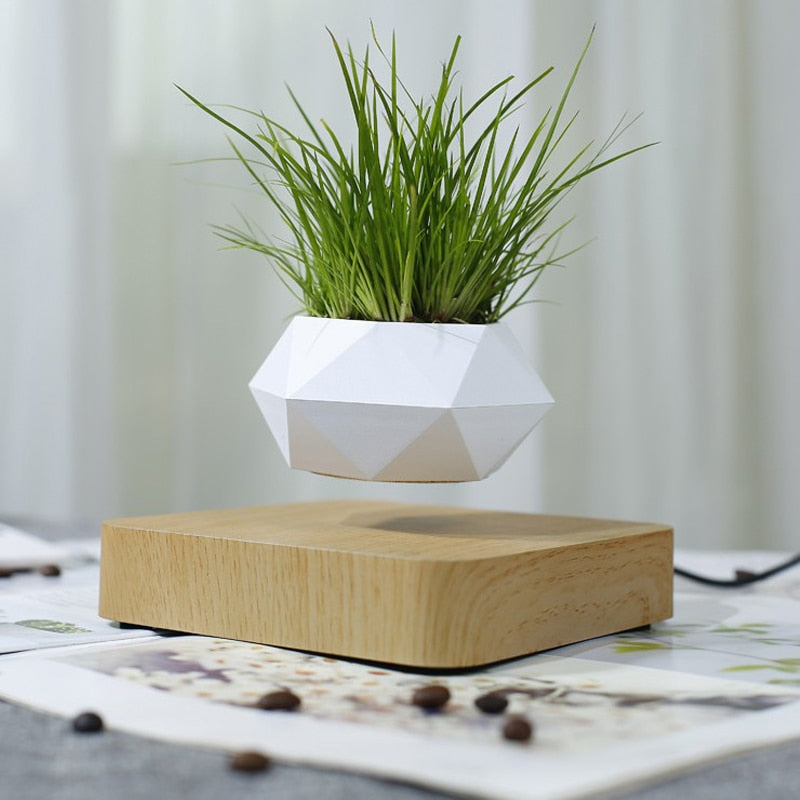 Levitating Bonsai/Plant/Flowers Planter - Rari Luxuries