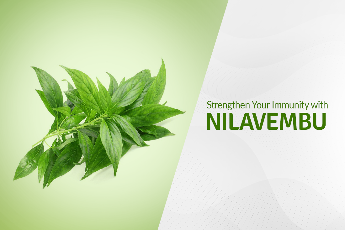 Strengthen Your Immunity with Nilavembu