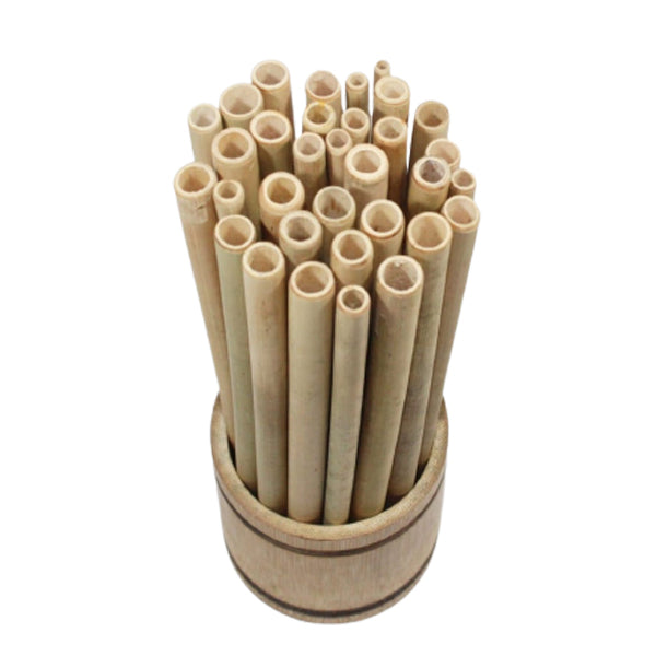 Bamboo Straws set of 20