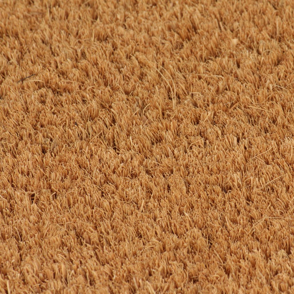 Litedpot Doormat Coir 24 mm 100x100 cm Natural